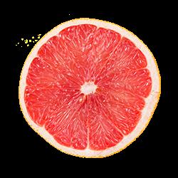 https://orbiyo.com/wp-content/uploads/2017/05/orange.png